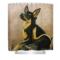 Alsatian Puppy Scratching Shower Curtain