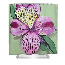 Alstroemeria No.1 Shower Curtain