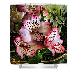 Alstroemeria Shower Curtain by Robert Bales