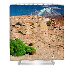 Altiplano Landscape Shower Curtain by Dirk Ercken
