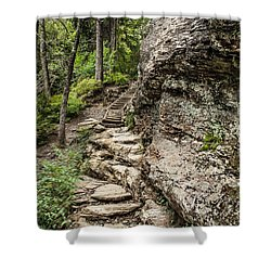 Alum Cave Trail Shower Curtain by Debbie Green