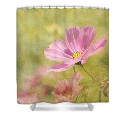Always Shower Curtain by Kim Hojnacki