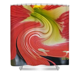 Amarylis Twirl Shower Curtain by Belinda Lee