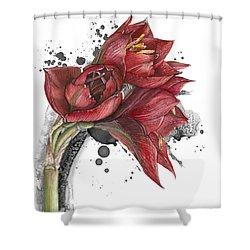 Amaryllis Flowers - 2. -  Elena Yakubovich Shower Curtain