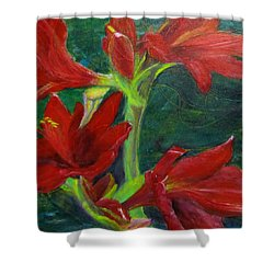 Shower Curtain featuring the painting Amaryllis by Linda Feinberg
