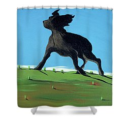 Amazing Black Dog, 2000 Shower Curtain by Marjorie Weiss