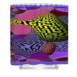 Mandelbrot Maze Shower Curtain