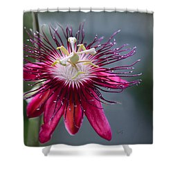 Amazing Passion Flower Shower Curtain