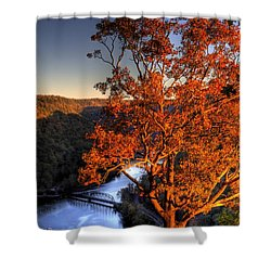 Amazing Tree At Overlook Shower Curtain by Jonny D