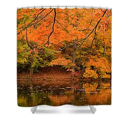 Amber Afternoon Shower Curtain by Lourry Legarde