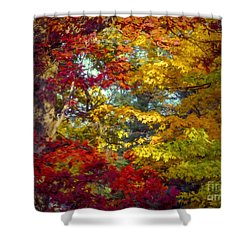 Amber Glade Shower Curtain