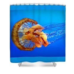 Amber Seduction Shower Curtain