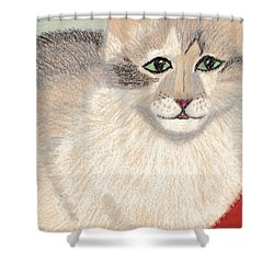 Ambers Shadow Shower Curtain by Jessica Foster