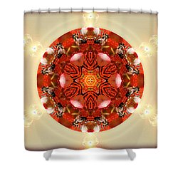 Ambrosia Shower Curtain