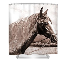 American Beauty Antique Shower Curtain by Shana Rowe Jackson