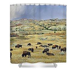 American  Bison Herd Grazing Shower Curtain by Tim Fitzharris