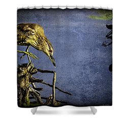 American Bittern With Brush Calligraphy Lingering Mind Shower Curtain by Peter v Quenter