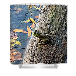 Shower Curtain featuring the photograph American Bullfrog by William Tanneberger