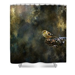 American Goldfinch 4 Shower Curtain by Deena Stoddard