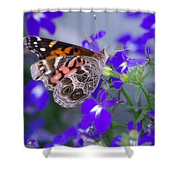 American Lady On Lobelia Shower Curtain