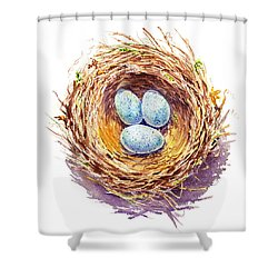 American Robin Nest Shower Curtain