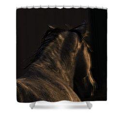 Americano 19 Shower Curtain