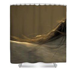 Americano 4 Shower Curtain