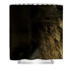 Americano 7 Shower Curtain