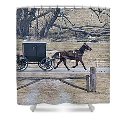 Amish Horse And Buggy March 2013 Shower Curtain