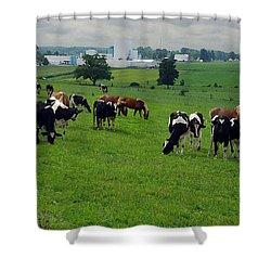 Amish Pastureland  Shower Curtain