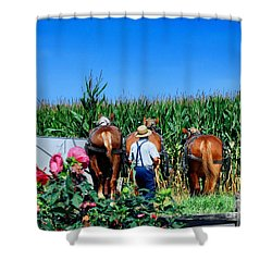Amish Plowing Shower Curtain