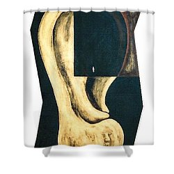 Shower Curtain featuring the painting Amnesia by Fei A