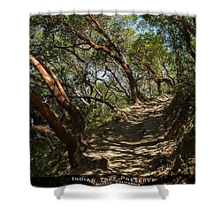 Among The Madrone Shower Curtain