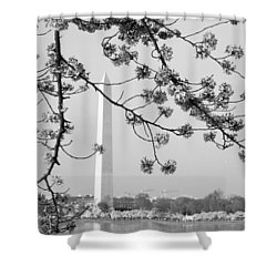 Amongst The Cherry Blossoms Shower Curtain by Emmy Marie Vickers