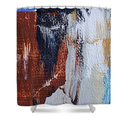Shower Curtain featuring the painting An Abstract Sort Of Weekend by Heidi Smith