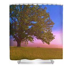 An All-american Sunrise Shower Curtain