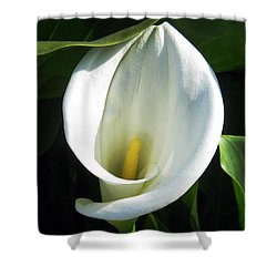 My Angels Lily  Shower Curtain by Janice Westerberg