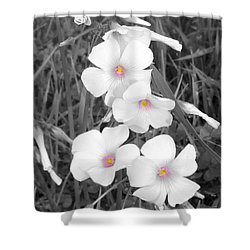 Shower Curtain featuring the photograph An Angels Work by Janice Westerberg