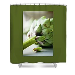 An Artichoke Shower Curtain