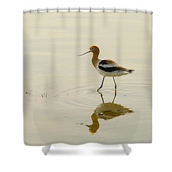 An Avocet Walking The Shore Shower Curtain by Jeff Swan