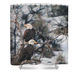An Eagle Pair  Shower Curtain