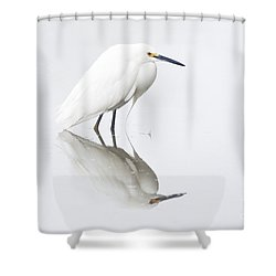 An Egret And An Overcast Day Shower Curtain