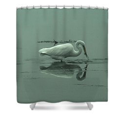 An Egret Feeding Shower Curtain by Jeff Swan