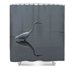 An Egret Standing In Its Reflection Shower Curtain by Jeff Swan