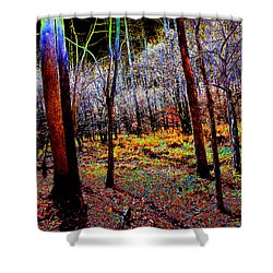 An Evening Forest Shower Curtain