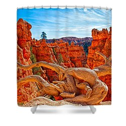 An Object For Imagination Shower Curtain