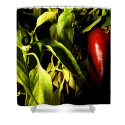 Anaheim Pepper Shower Curtain