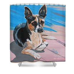 Ancho A Portrait Of A Cute Little Dog Shower Curtain by Phyllis Kaltenbach