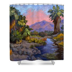 Ancient Cahuilla Fish Traps Shower Curtain by Diane McClary
