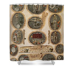 Ancient Celtic Cemetery Hallstatt Shower Curtain by Science Source